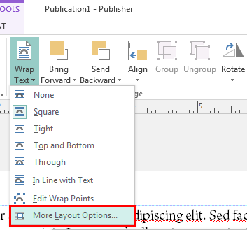 Text boxes in Publisher: More Layout Options